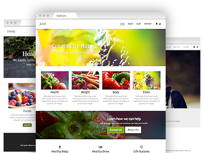 A variety of easy–to–redesign website templates